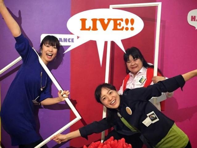 staff-fun0
